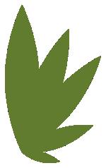 Feuille du logo Oh So Green