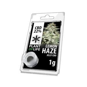 jelly de chanvre gout lemon haze 22% CBD 1 gramme en livraison en france en 48H