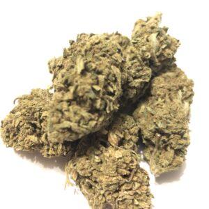 fleur de cbd AK47 une odeur légère et un goût de pins, elle est puissante par son effet en livraison en france. Cbd-shop, magasin-cbd, cbd-haguenau, cbd-wissembourg