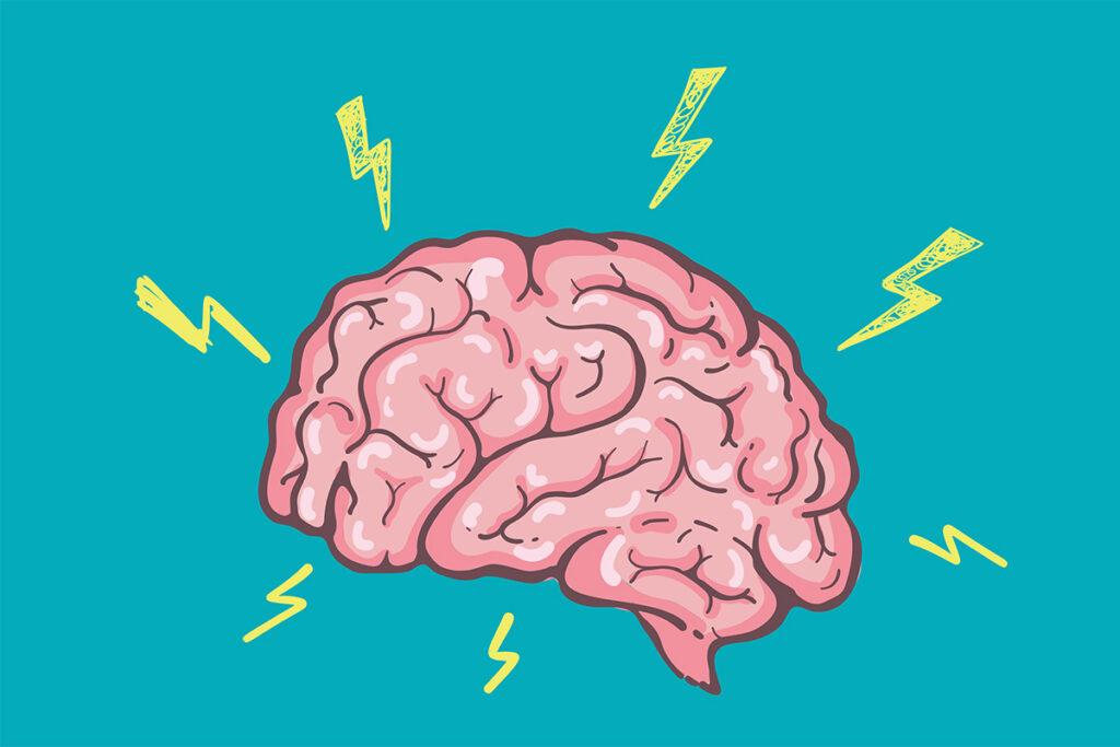 image de cerveau qui est rebranché après passage du CBD pour le restimulé un fonctionnement des synapse après régénération de la myéline